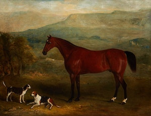 Artwork by John E. Ferneley, Bay Hunter and Hounds at Wensleydale, Yorkshire,