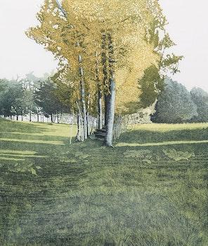 Artwork by Phil Greenwood, Saplings