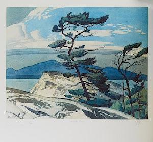 Artwork by  Paul Duval & Alfred Joseph Casson, Casson's Cassons