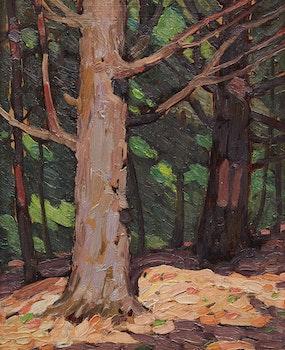 Artwork by Frederick Nicholas Loveroff, Autumn Forest