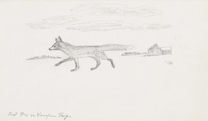 Artwork by Thoreau MacDonald, Red Fox in Vaughan; Strawberry Roam