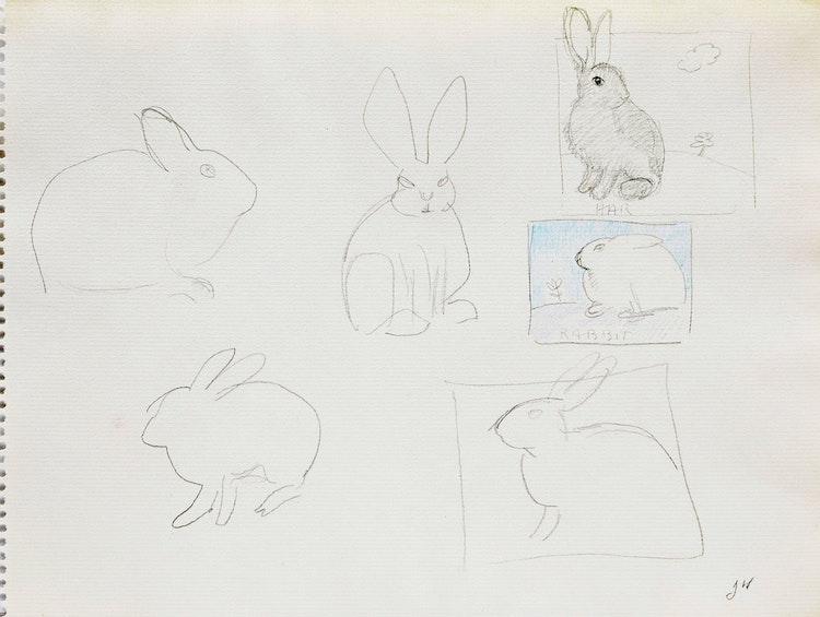 Artwork by Joyce Wieland,  Bunnies