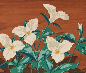 Artwork by Alfred Joseph Casson, Trilliums