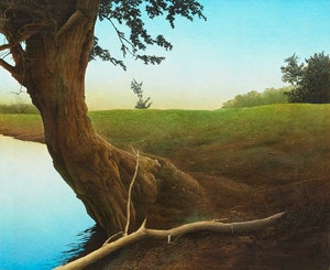 Artwork by Lloyd Fitzgerald, Lake Shore and Field