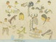 Thumbnail of Artwork by Nancy Pukingrnak Aupaluktuq,  Fishing