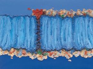 Artwork by Fernand Toupin, Mon pays bleu