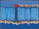 Thumbnail of Artwork by Fernand Toupin,  Mon pays bleu