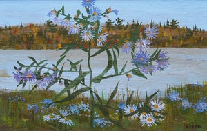 Artwork by Bruno Joseph Bobak, Fall Asters