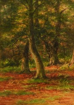 Artwork by Frederick Arthur Verner, Burnham Beeches; Burnham Beeches