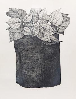 Artwork by Jo Manning, Foliage Study