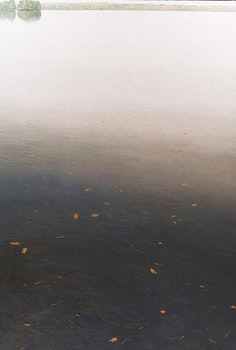 Artwork by Peter Rotter, Untitled (Landscape)
