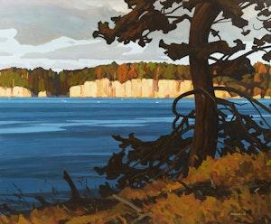 Artwork by Clayton Anderson, Valdez Bluffs with Cedar