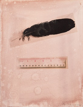 Artwork by Carl Beam, Untitled (Feather and Ruler)