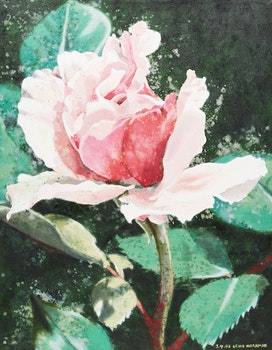 Artwork by Lenni Workman, Cameo: Rose