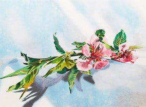 Artwork by Lenni Workman, Spring Still Life #4 (Peach Blossom)