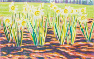 Artwork by John Ward, Untitled (Flowers in Sunlight)