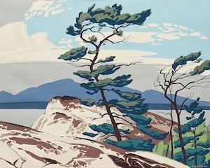 Artwork by Alfred Joseph Casson, The White Pine