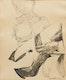 Thumbnail of Artwork by Dennis Eugene Norman Burton,  Seated Woman