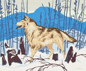 Artwork by Alfred Joseph Casson, Timber Wolf