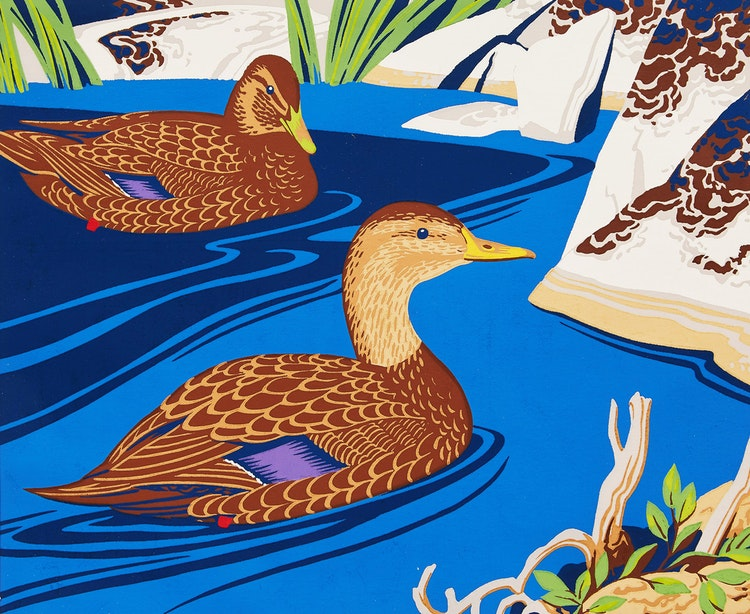 Artwork by Alfred Joseph Casson,  Black Duck