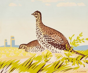 Artwork by Alfred Joseph Casson, The Sharp-Tailed Grouse
