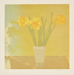 Artwork by Jack Chambers, Jack Chambers; Daffodils