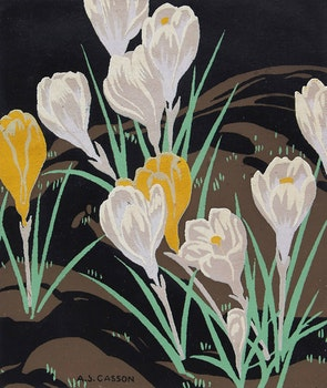 Artwork by Alfred Joseph Casson, Crocuses; Hyacinths