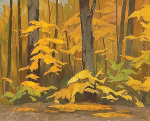 Artwork by Alfred Joseph Casson, Maple Saplings