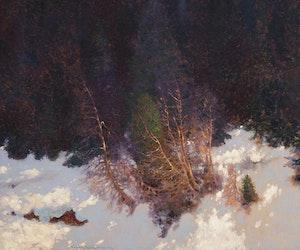 Artwork by Frank Hans Johnston, The Velvet of Winter Woods