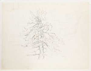 Artwork by Alexander Samuel Millar, Tree Study; Forest Landscape; Lake Shore; Trees and Lake; Thistles
