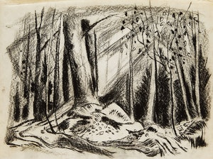 Artwork by Alexander Samuel Millar, Forest Landscape; Country Landscape; Forest Study; Tree Study; Abstract Tree; Angry Cat