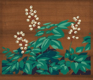 Artwork by Alfred Joseph Casson, White Banberry