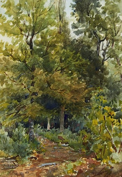 Artwork by Joseph Thomas Rolph, Forest Trail