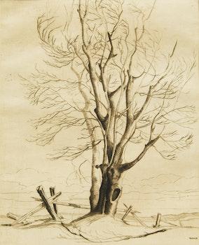 Artwork by Murray William Kearns, Collingwood Heights