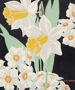 Artwork by Alfred Joseph Casson, Daffodils