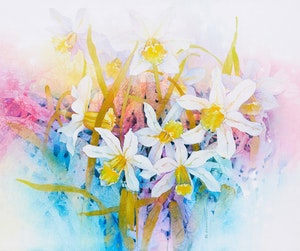 Artwork by Edward Drahanchuk, Early Spring Snow Stars