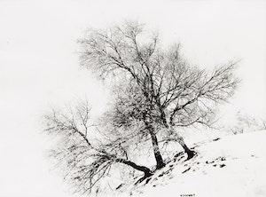 Artwork by Alexander Henderson, Four Landscape Studies (4)