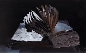Artwork by Yuri Dojc, The Last Folio Series (8)