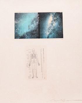 Artwork by Carl Beam, Untitled (Milky Way / Skeletal System)