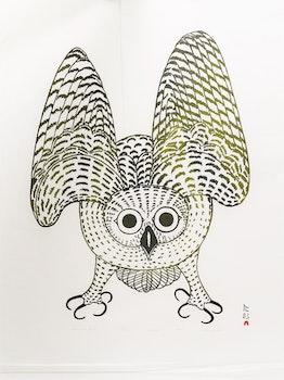 Artwork by Kananginak Pootoogook, Summer Owl