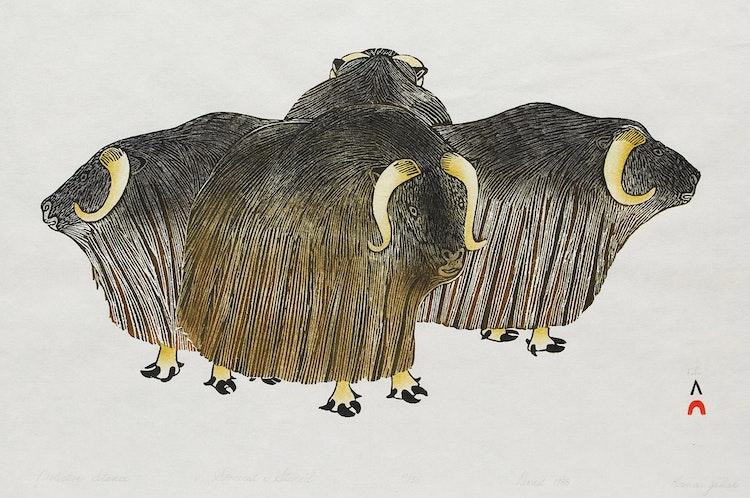 Artwork by Kananginak Pootoogook,  Protective Stance