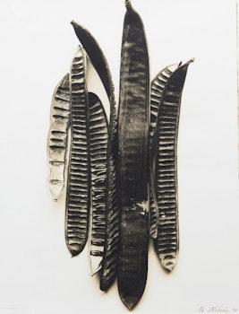 Artwork by Adriene Veninger, Pod no.19