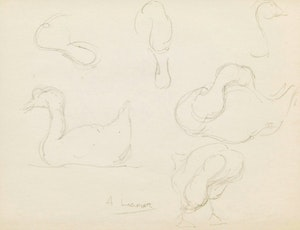 Artwork by Arthur Lismer, Duck Sketches