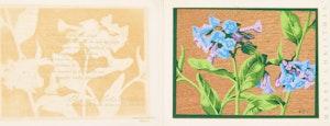 Artwork by Alfred Joseph Casson, Bluebells; Hepatia; White Wood Sorrell