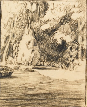Artwork by John Goodwin Lyman, The Pine Tree