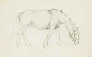 Artwork by Manly Edward MacDonald, Horse
